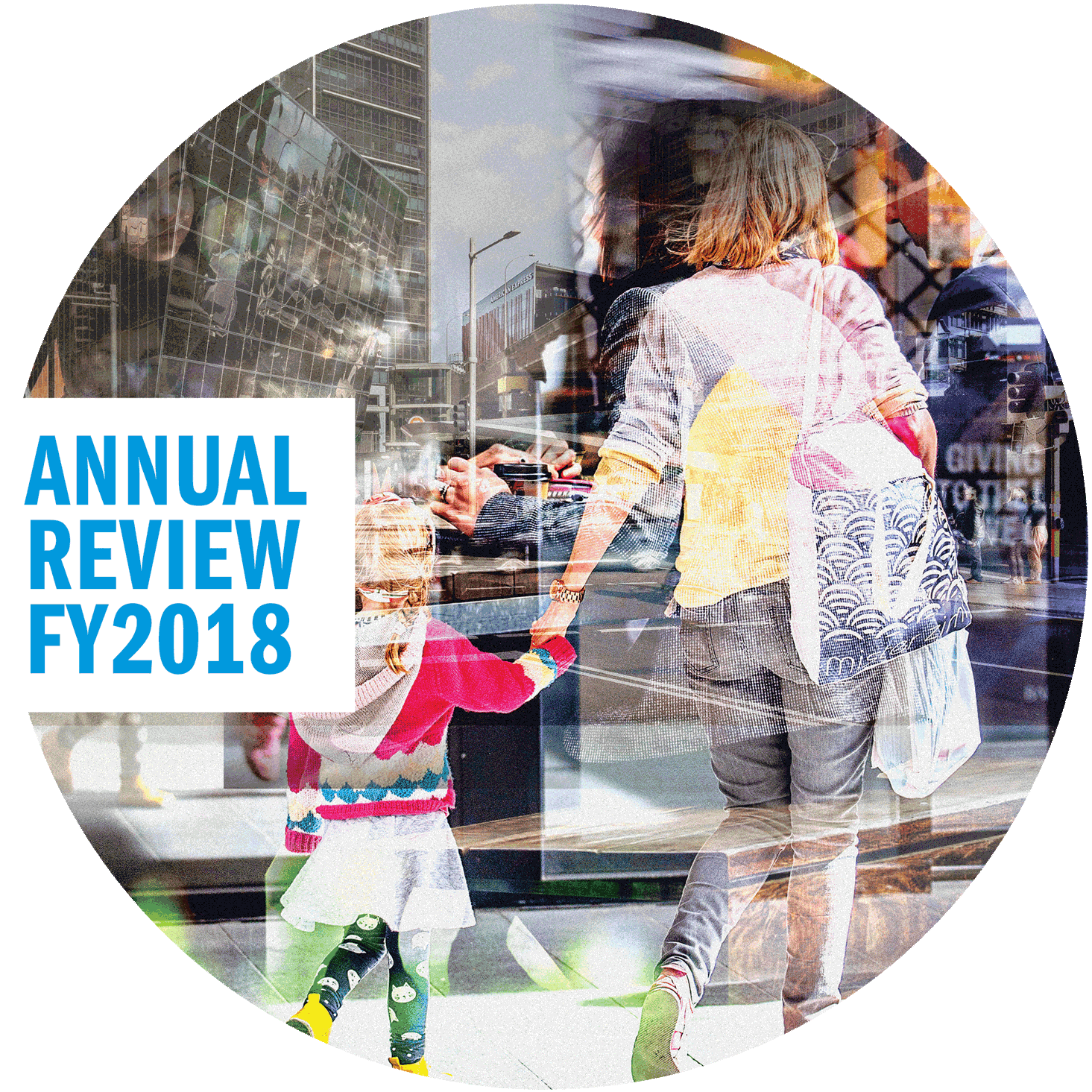 FY2018 Annual Review